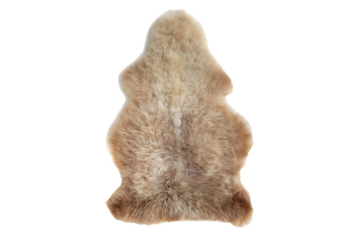 SHEEPSKIN RUG(BROWN / G)W620 H880 D45mm ¥18,000 The Tastemakers & Co.