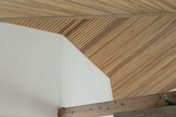 天井は全面、地元産の杉板張りで仕上げている。