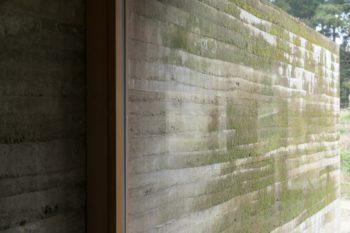 外壁の版築壁は、2年近い歳月で苔むし表情を増している。
