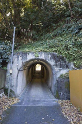 このトンネルの先に、プライベート感たっぷりの古関邸がある。