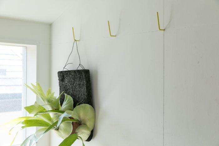 SAT.PRODUCTSのフックで植物を飾る。