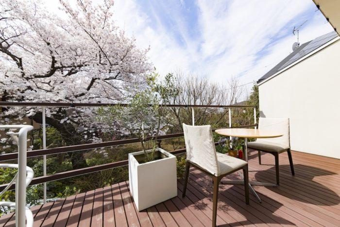 隣家の庭は、撮影時は桜が満開だった。