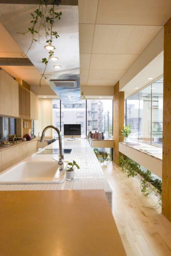 レンジフードはキッチン、ダイニングテーブルに合わせて横長に。観葉植物の飾り棚にも。