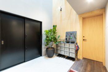 左の黒い扉が玄関扉。靴箱脇の緑はカシワバゴム。