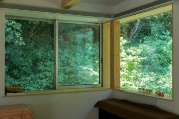森が近い。窓の外はすぐに稲村ヶ崎の森だ。「アリ、蜘蛛、ムカデ……。虫は多いです(笑)」