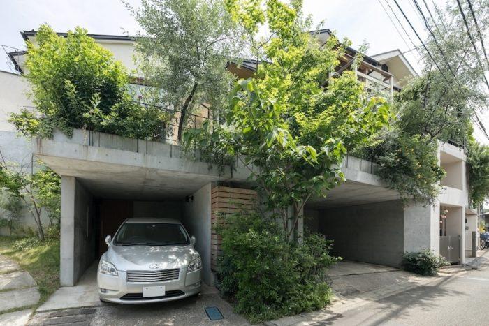 右がS邸、左がO邸。生き生きと枝葉を伸ばす木々は、近隣でもひときわ目を引く。