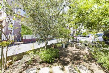 庭づくりは主に隆寿さんが行っている。オリーブの木は大工さんからのプレゼント。中央の空間でバーベキューをすることも。