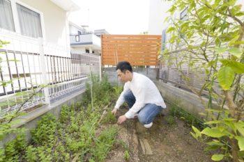 南側のベランダ下にあるハーブ園。隆寿さんが育てたハーブは、カフェのメニューで使用する。