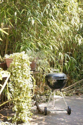 庭には常にバーベキューセットがスタンバイ。