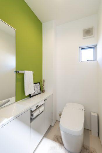トイレの壁は緑に塗られている。
