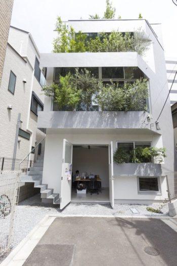 グリーンに包まれたファサードが迎えてくれる。1階は早川友和建築設計事務所。