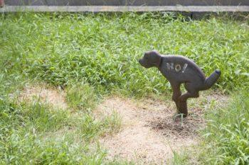 「庭にオシッコをされると草が枯れてしまうので止めてほしいんですが、標識の文字は読めないようです(笑)」