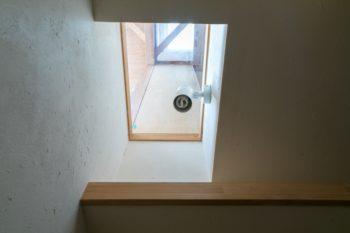 屋根には天窓をつくり、各フロアのその直下の部分をガラス張りに。下の階まで太陽の光が落ちる。