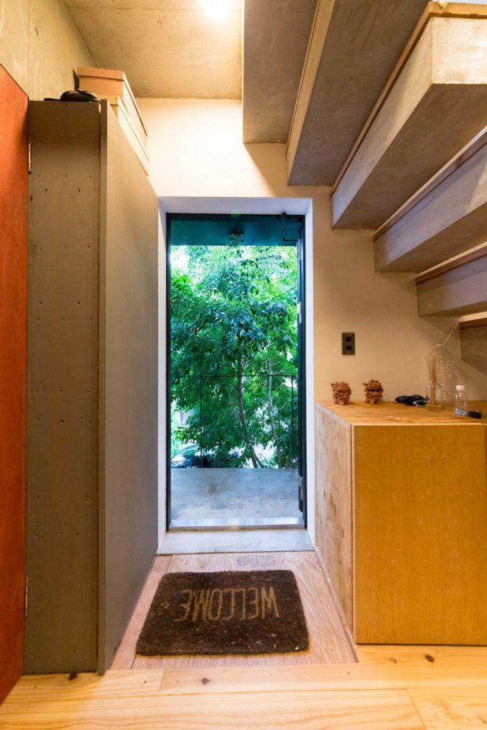 玄関ドアを開けるとシマトネリコの木が目に飛び込んでくる。