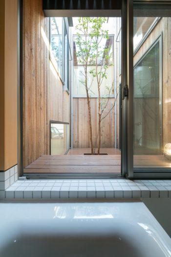 浴槽に浸かりながら中庭のヒメシャラを眺められる。年が経つとともに壁のレッドシダーがシルバーに変化していく。