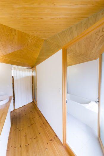 洗面カウンターの後ろ側はトイレとバスルームで、六角形の半分の台形部分にぴったりおさめている。