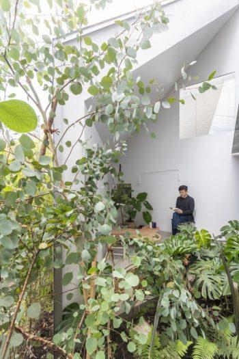 この〈庭〉は外部だが外からの視線はまったく気にならない。