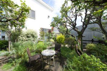 和洋さまざまな草木が植えられた庭は母屋との共有スペース。朽ちたイスに座り、コーヒーを飲んだり、読書をしたりすることも。