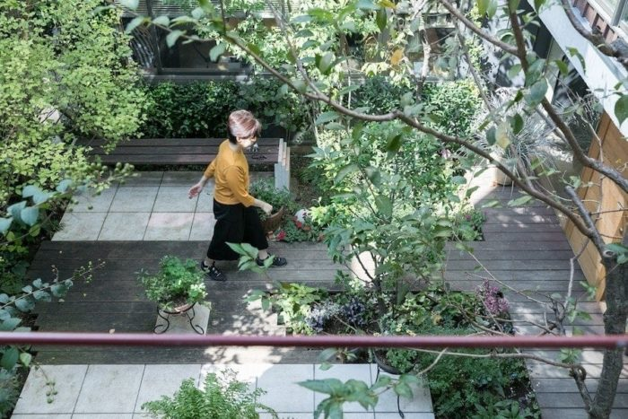2階のダイニングテーブルから中庭を見下ろせば、美しいグリーンを楽しめる。
