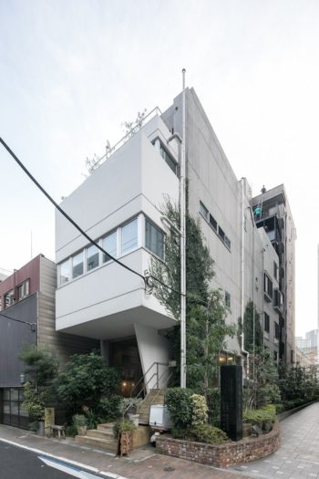 建物外観。壁を這う蔦もだいぶ面積が広くなってきている。