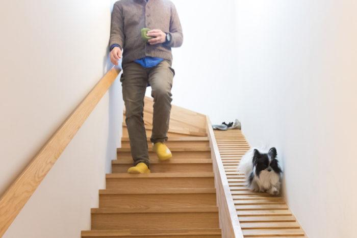 数度の検証を繰り返し完成した犬専用スロープ階段。人用の階段も通常より緩やかな段差になっている。