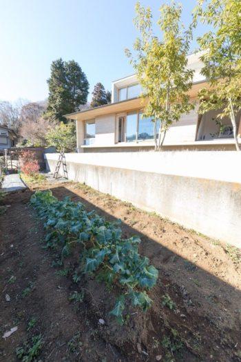 南側の庭から1段下がったところに、家庭菜園用の畑が。