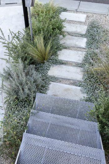 玄関へのアプローチの両脇には〇〇〇や〇〇〇などが植えられている。