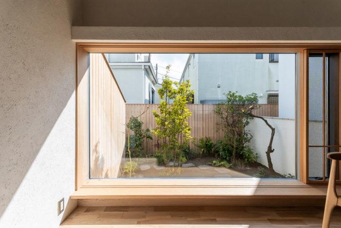 奥さんがとても好きだという庭。大きな窓を通して庭を体感することができる。窓の上部が壁から突き出て段状になっているがこれは「リビングのある空間の断面のプロポーションが最後までしっくりこなくてスタディを重ねた結果」できたもの。