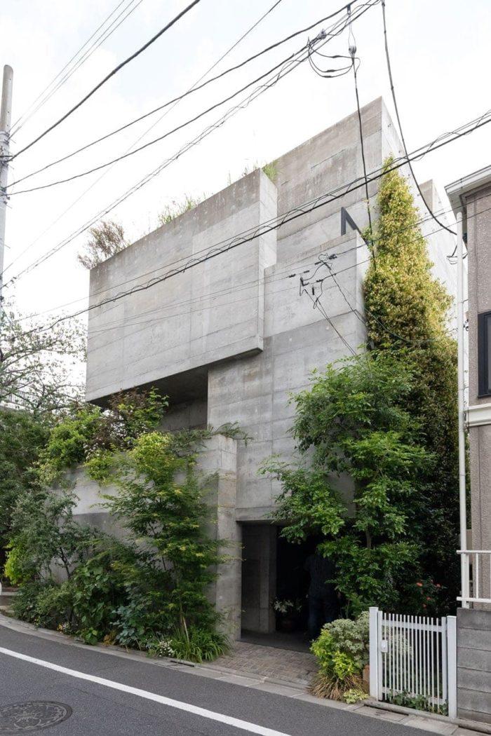 竣工5年目の多田邸。年月とともに緑のボリュームが変化していく。