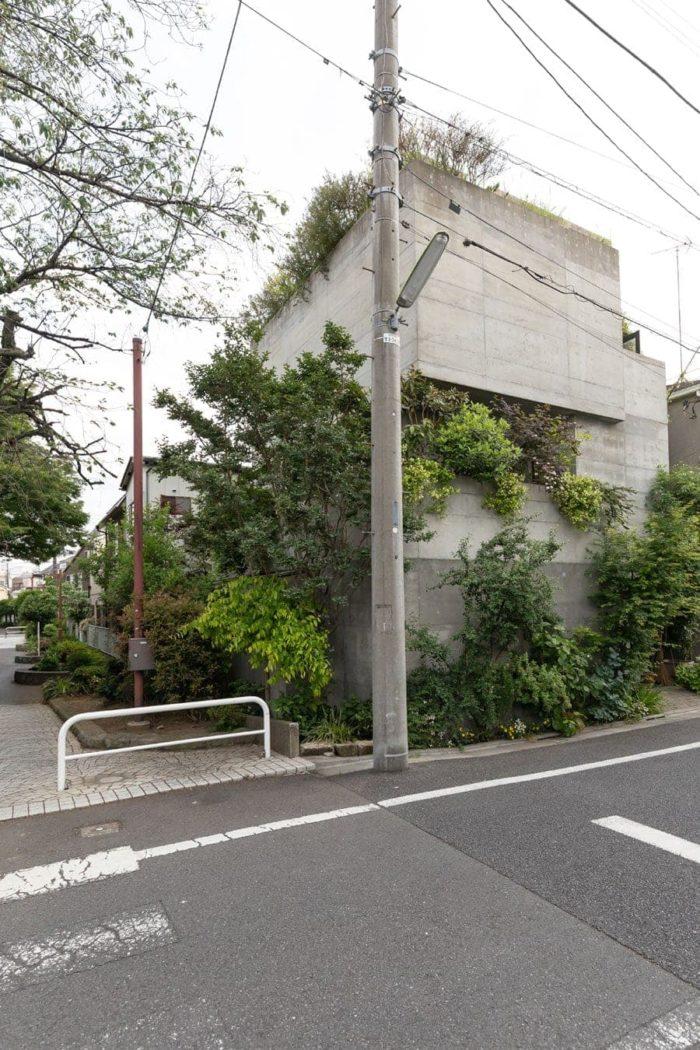 緑道の樹々と一体となった建物。