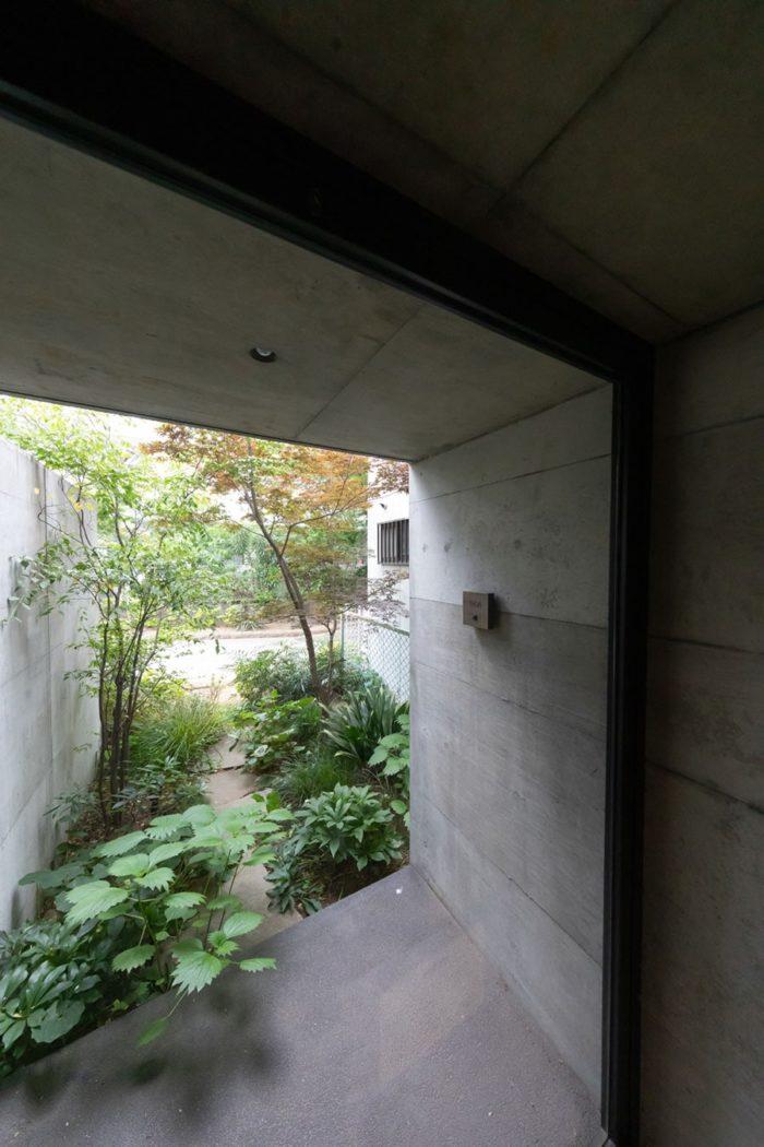 緑道に面した事務所のエントランス。「この入口はほとんど使っていないので、どんどん葉が茂ります(笑)」