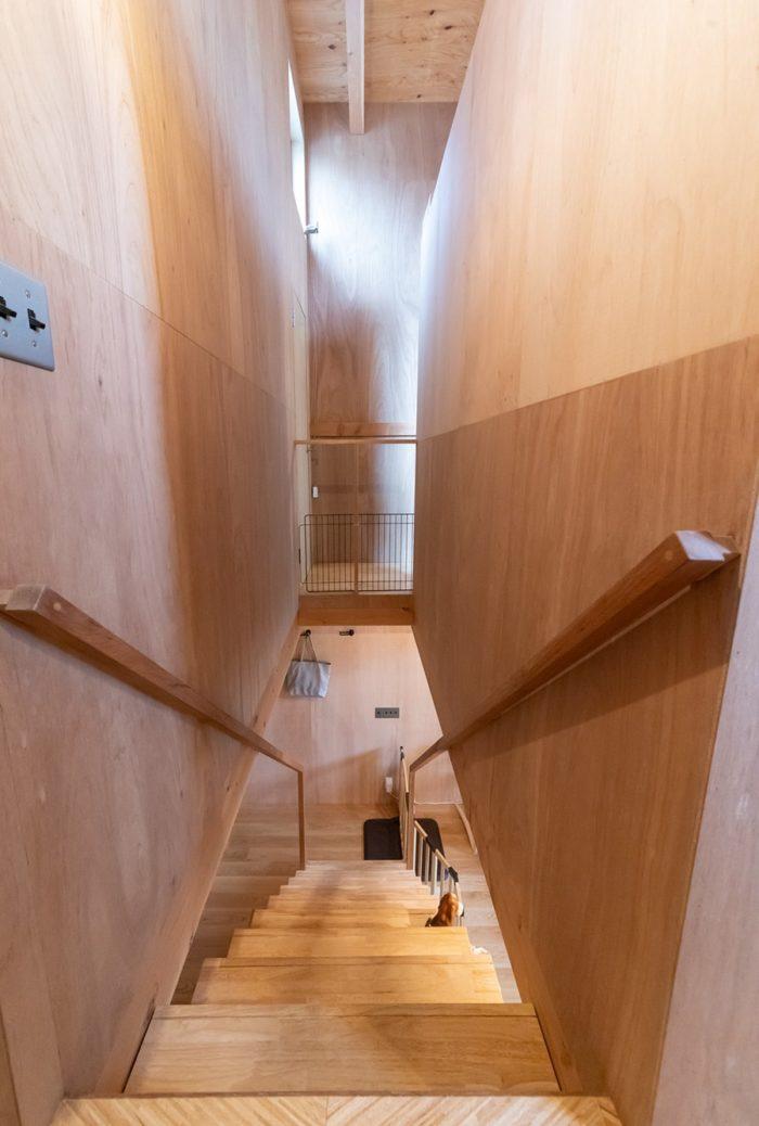 玄関とリビングの間に階段を設置。空間を塞ぐことなく緩やかに分けている。