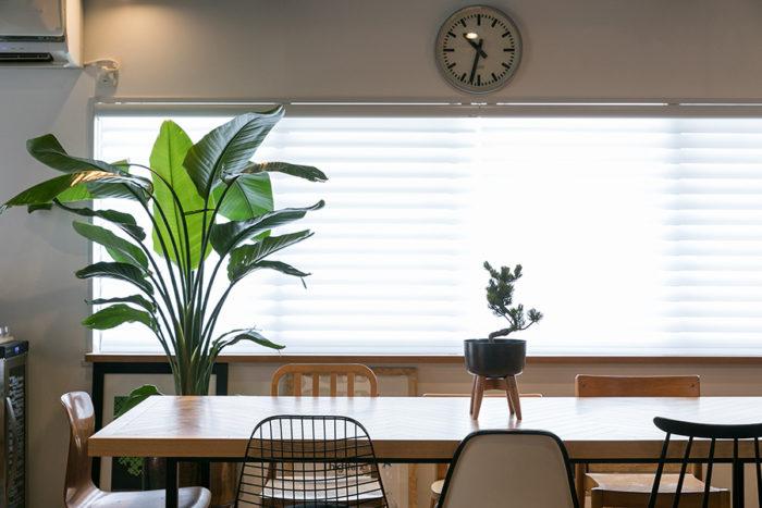 ブラインドはハンターダグラスのものをチョイス。柔らかな光を室内に取り入れながら、外の建物からの視線は遮ることができる。窓枠の下にはナラ材を張った。アアルト、タピオ・ウィルカラ、フリッツ・ハンセン……お気に入りのイスを一脚づつ並べている。