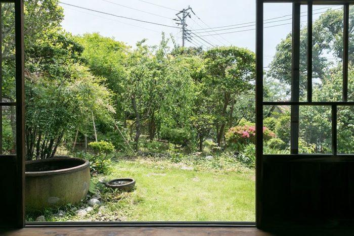 縁側越しに庭を見る。「祖父と祖母が好きな植物を次々植えていったので、整っていない森みたいな庭です」。