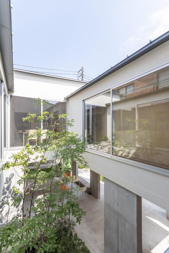 リビングから見る。光庭が周囲の空間に十分な光をもたらす。左側にキッチンがある。