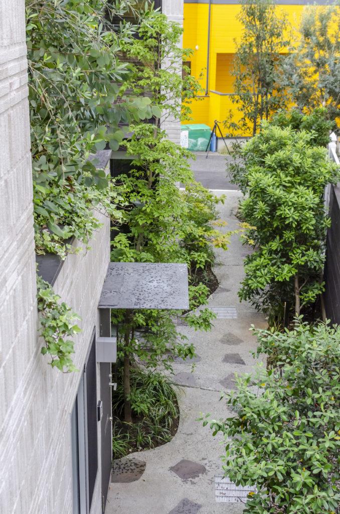 通路に沿って植えられた緑には、この敷地の住人だけでなく近隣の人たちも「気持ちよく暮らせるように」との思いが込められている。