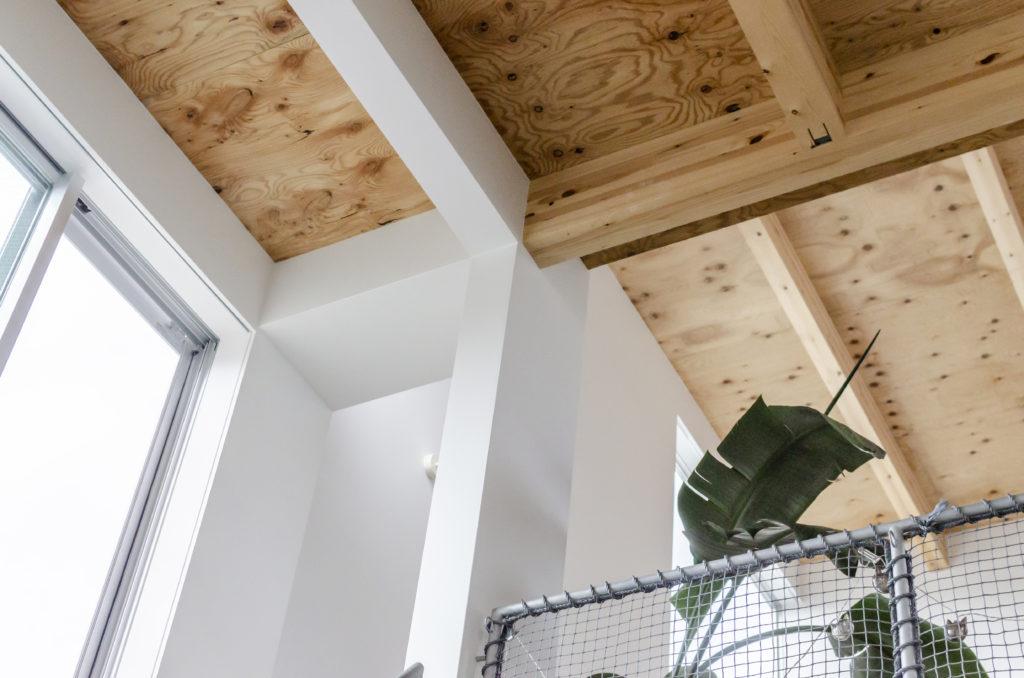 1階から見上げる。階段上部の梁だけが下の柱と揃えて白く天井が仕上げられている。