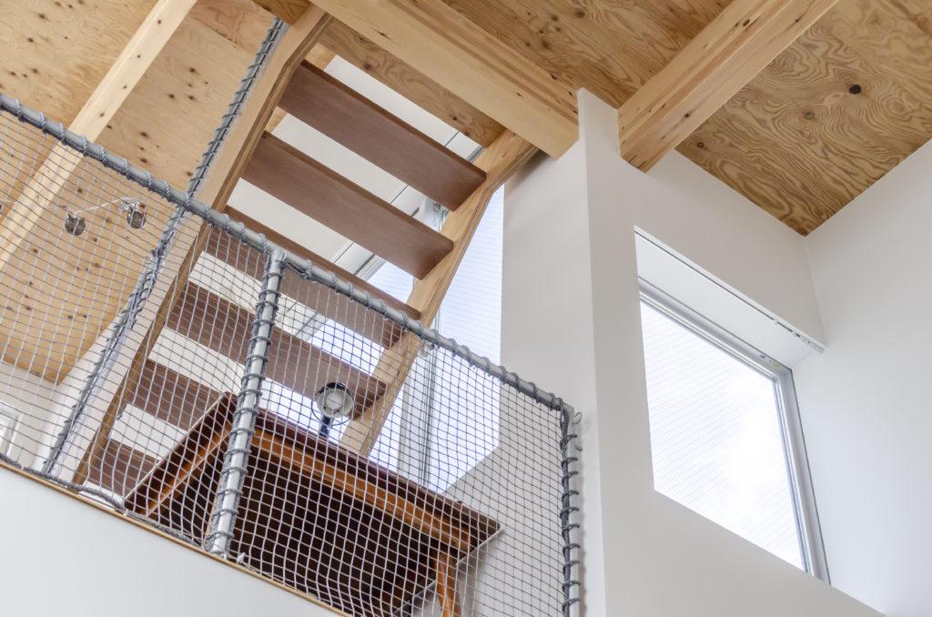 2階リビングからサンルームに至る階段を見上げる。白の壁とそのほかの木の部分とのコントラストがきいている。