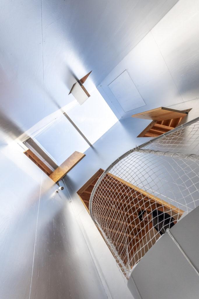 階段室を見上げる。トップライトから落ちる光が2階の各スペースにも光をもたらす。