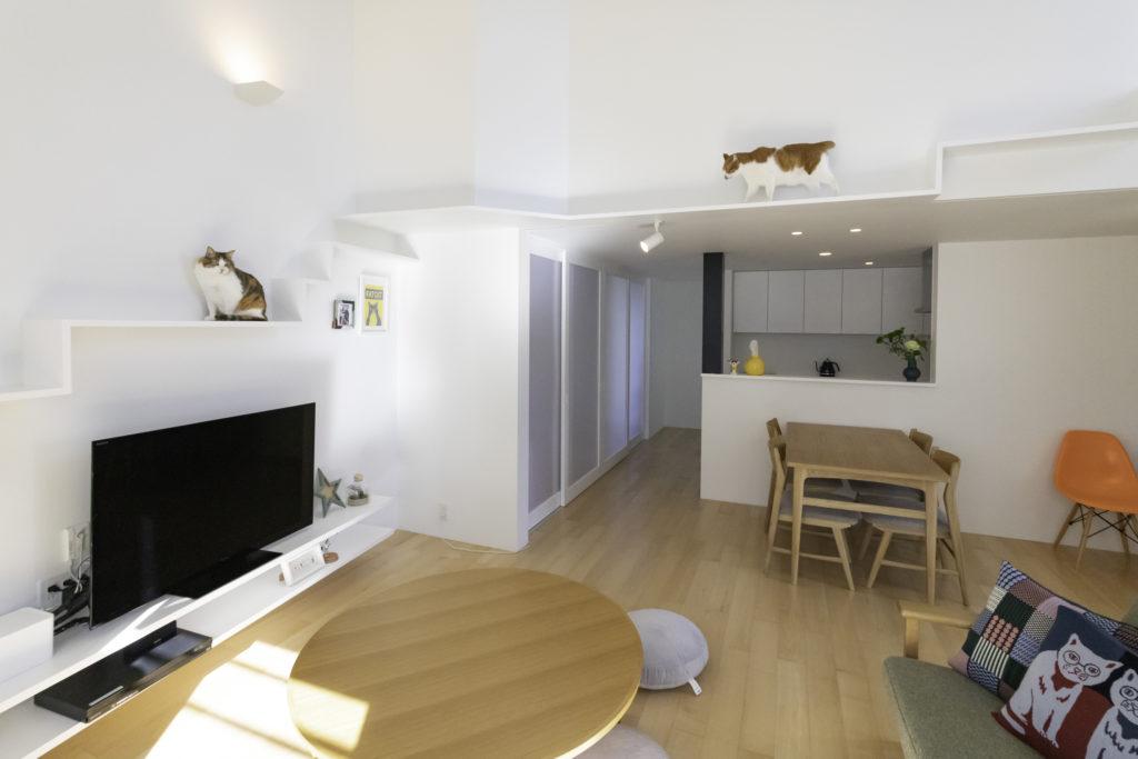 2階リビングに設えたキャットウォーク。猫たちが自由に行き来する姿に癒される。