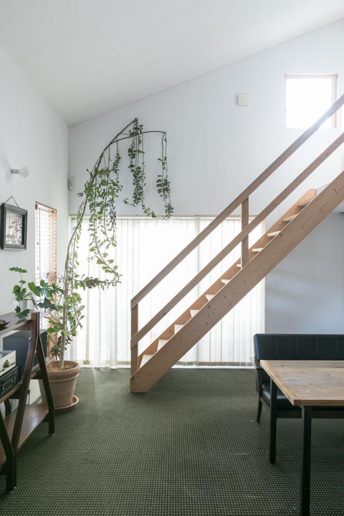 たっぷりとした天井高いっぱいまで伸びた存在感のあるグリーンは、ジョンソンタウン内にあったグリーンショップで購入。「ブラインドは以前の住人が残していってくれたものです。ありがたいです」