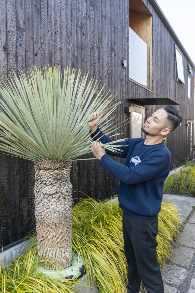 TREERORTE inc.代表・ランドスケープデザイナー、石川洋一郎さん。メキシコ原産のユッカなど、庭には立派なグリーンが多数。