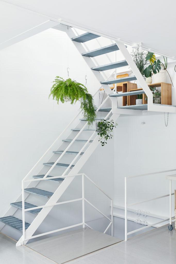 階段の踊り場などにもグリーンを欠かさない。白い空間に木箱とグリーンが彩りを与えている。