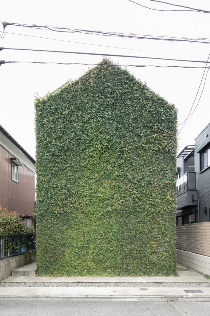 建築家・猿田さんより「GREEN WALL」と名付けられた中川邸の外観。もともとは真っ白い壁だったが、竣工から5年が経ち、緑に覆われた完成形となった。