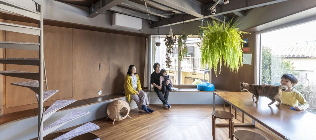 都心の狭小地に建つ建築家の自邸 人も猫も思い思いの場所で過ごす出窓に囲まれた5層の家