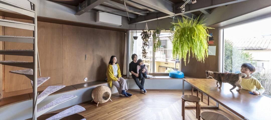 都心の狭小地に建つ建築家の自邸 人も猫も思い思いの場所で過ごす 出窓に囲まれた5層の家