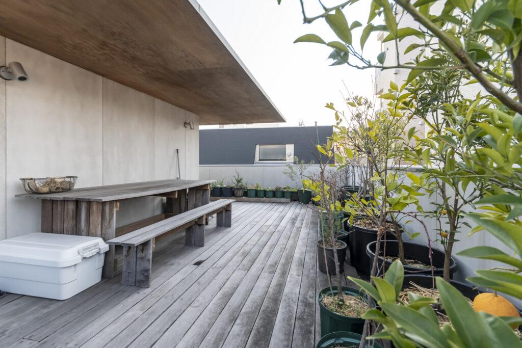 屋根庭の東側にもグリーンが並ぶ。右に見えるオレンジ色の実ははっさく。このスペースでご飯を食べたりビールを飲んだりすることもあるという。
