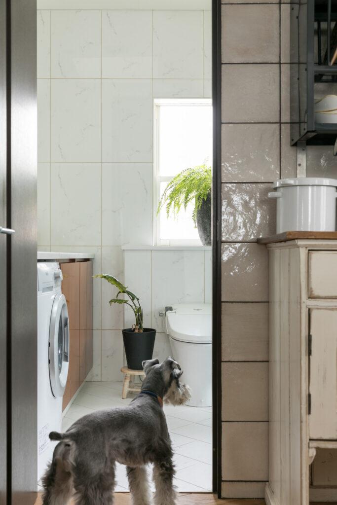 洗面所は明るい白のタイルに。