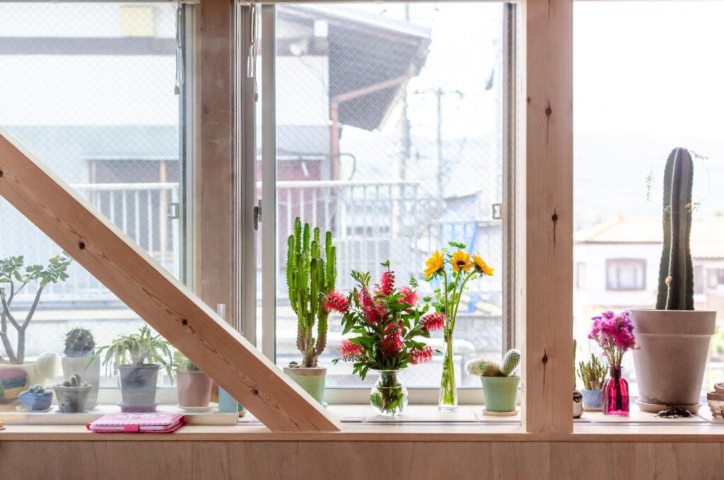 2階の出窓は端から端までサボテンほかさまざまなグリーンが置かれていてどこにいても目に入る。グリーンの手前側にガラス戸があり閉めればサンルームのようになる。