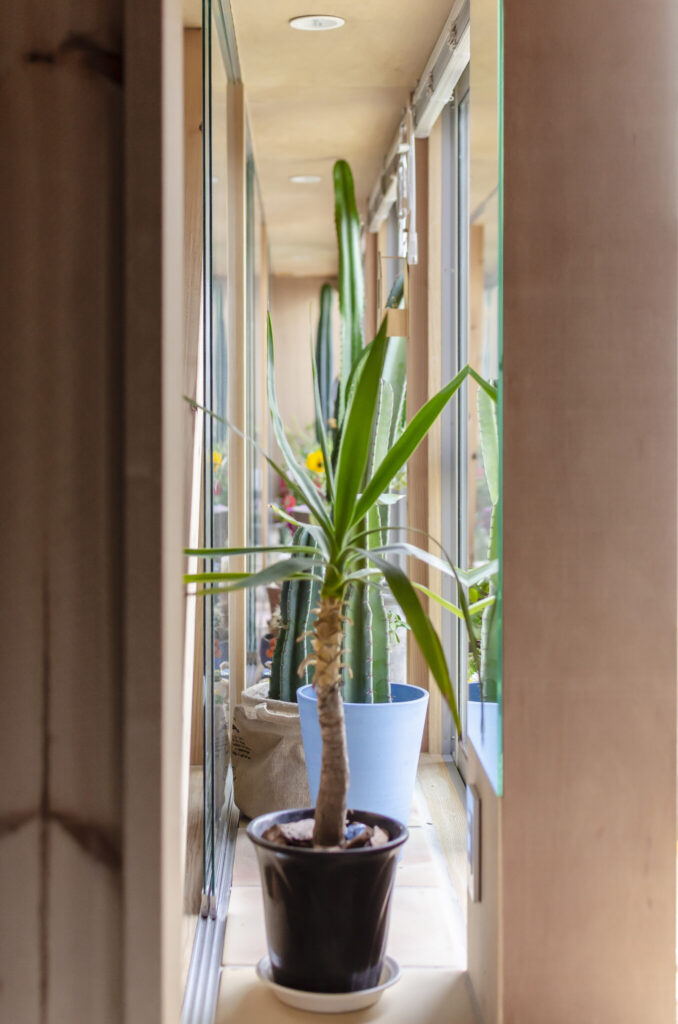 出窓の部分が断熱層の役割を果たしているため「わりと気温が一定していて、寒い暑いのストレスがあまりない」という。